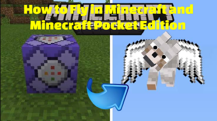 How to Fly in Minecraft and Minecraft Pocket Edition
