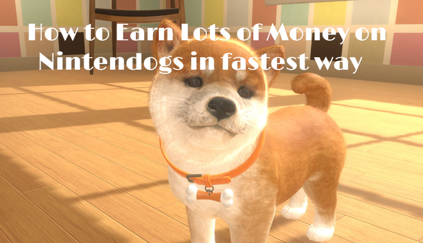 How to Earn Lots of Money on Nintendogs in fastest way