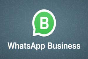 Business whatsapp